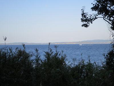 観音崎 海